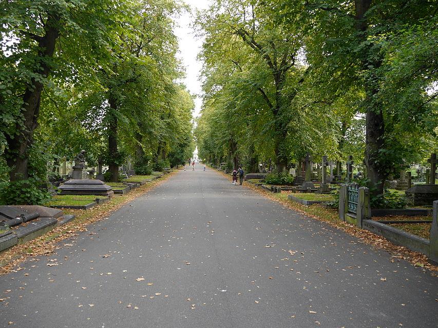 Центральная аллея Бромптонского кладбища